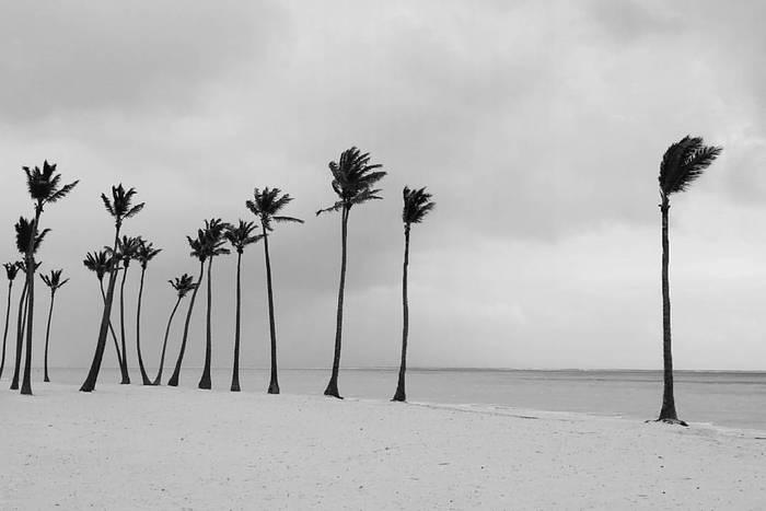 """Пляж """"Меланхолия"""""""