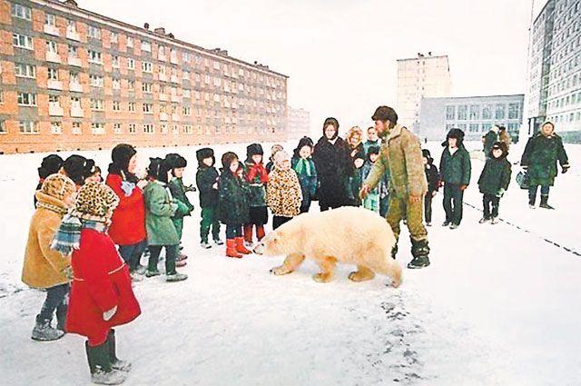 Своя среди чужих. История медведицы, считавшей людей своей семьёй белый медведь, документальный фильм, Интересное, печальный конец, видео, длиннопост
