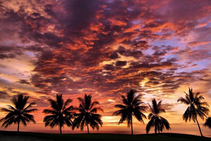 Интересные факты - Гавайи (острова) Факты, Интересное, Гавайи, Познавательно, Длиннопост