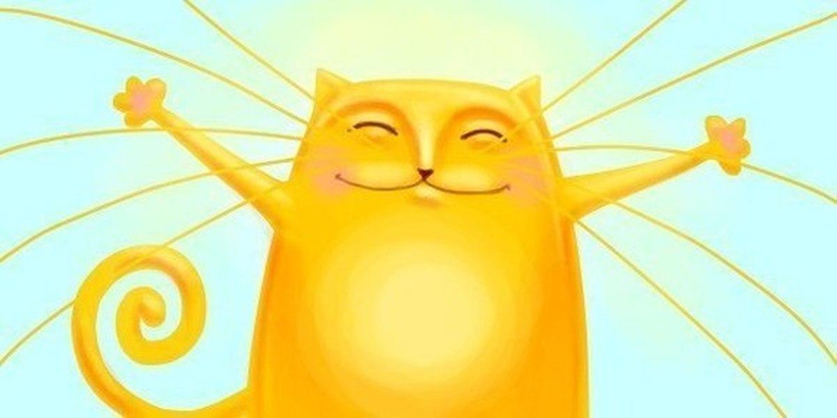 Сентября день, открытки котик и солнышко