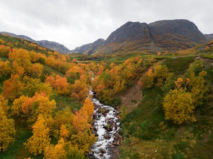 Роскошные пейзажи Норвегии - Страница 21 1505668145149218734