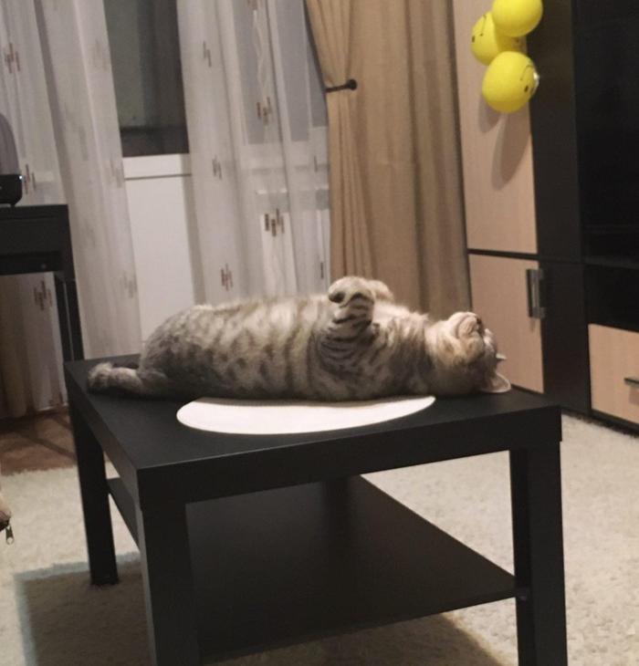 Покушал.. можно и отдохнуть))