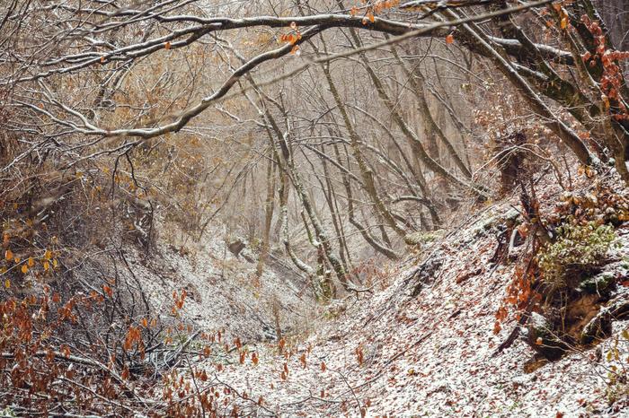 Перевал у с.Аркас в Дагестане Природа, Снег, Перевал, Дагестан, Аркас, Фотография, Моё, Длиннопост