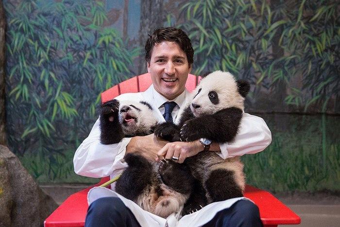 Национальное достояние Канады, премьер-министр Джастин Трюдо. Национальное достояние, Канада, Премьер-Министр, Длиннопост