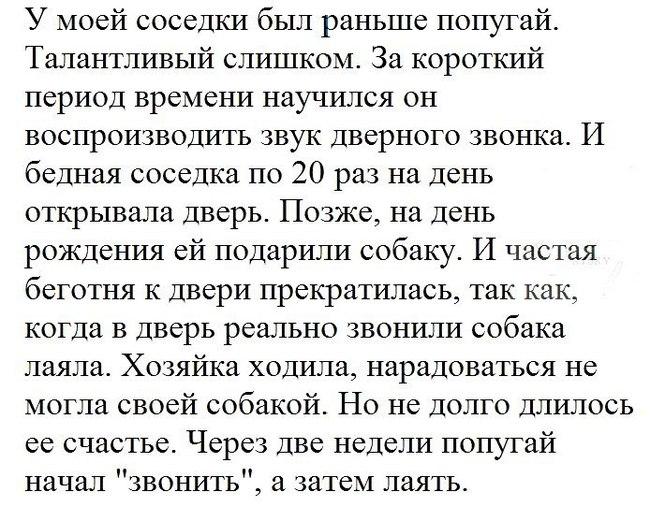 https://cs9.pikabu.ru/post_img/2017/09/24/6/1506241617125411537.jpg