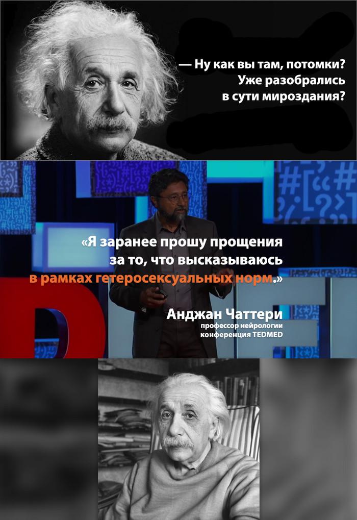 Эй, цивилизация, ты как? Где болит? Альберт Эйнштейн, Ted, Нейрология, Общество, Гендер, Разнообразие полов
