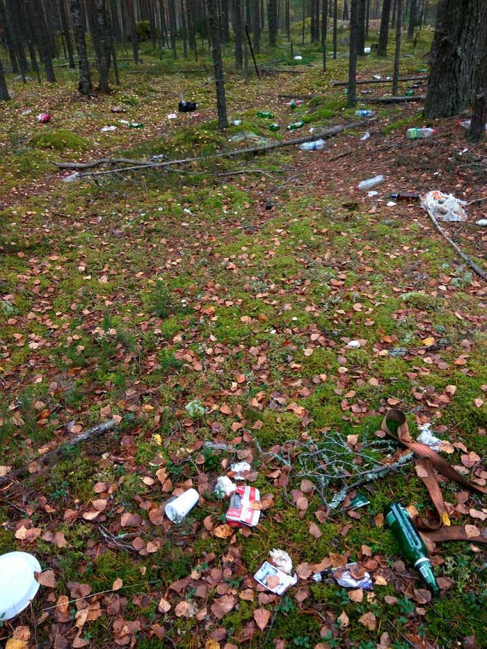 Сходил за грибами, собрал 10 мешков мусоровиков Лес, Чистый лес, Мусор, Свалка, Уборка, Берегите природу, Длиннопост