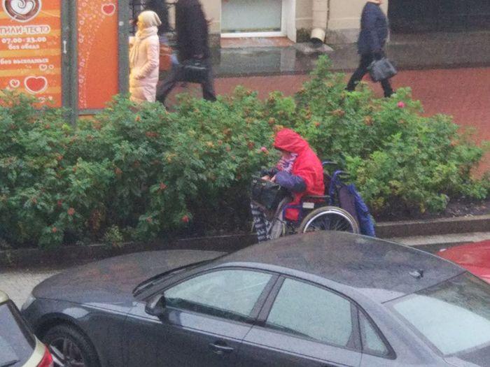 Чудеса у метро Владимирская Мошенники, Санкт-Петербург, Владимирская