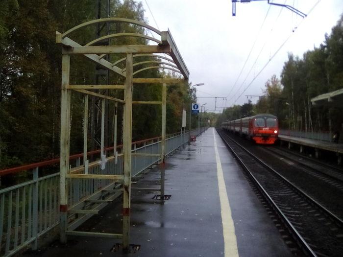 Подмосковье сегодня РЖД, Дождь, Платформа, Навес