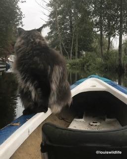 Шерстяной рыбак