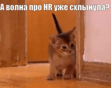 Можно выходить?