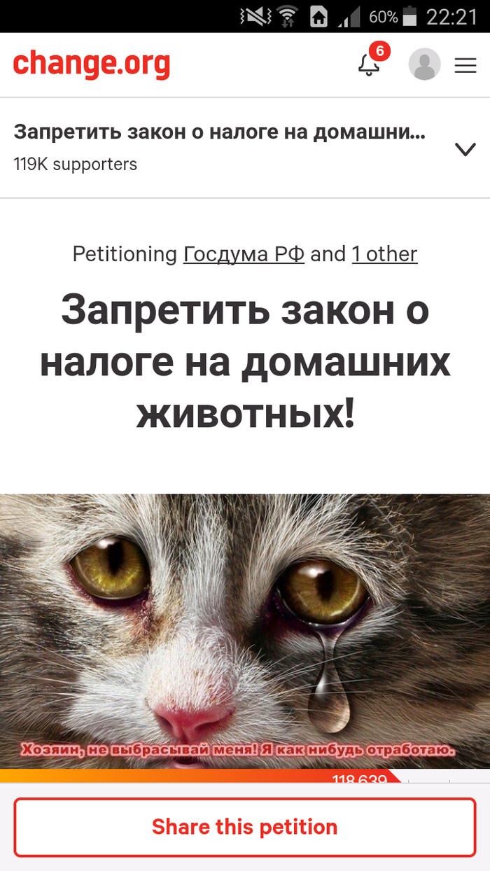 Честные живодеры в правительстве? Животные, Помощь животным, Домашние животные, Дурацкие законы, Закон, Законы РФ, Петиция, Коты и собаки вместе, Длиннопост