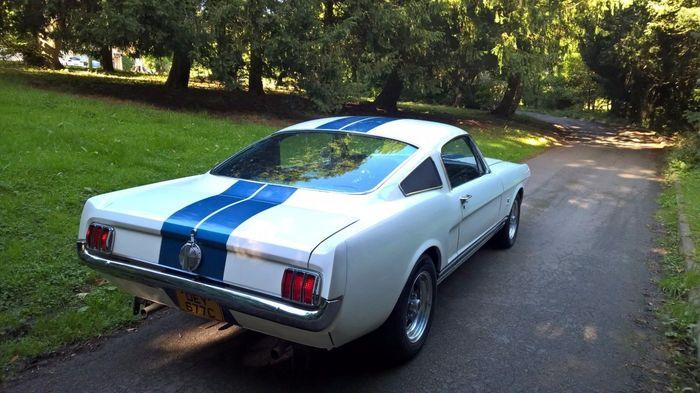 1965 Ford Mustang Fastback 1965 Ford Mustang Fastback, Авто, Фотография, Ретроавтомобиль, Длиннопост