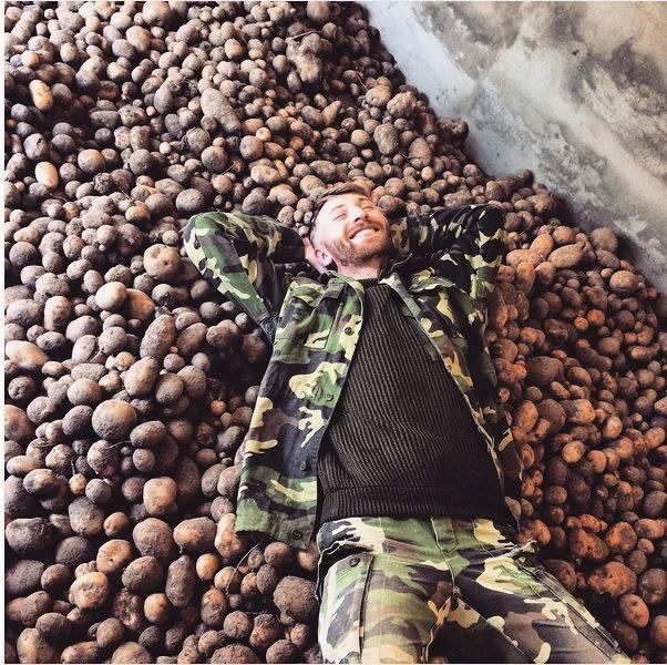 Белорусы хвалятся урожаем картошки в Instagram Белорусы, Картофель, Юмор, Веселый урожай, Длиннопост