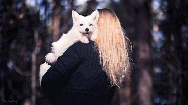 Самая счастливая лиса  ^^ Лиса, Плечи, Девушки, Животные, Белая, Фотография