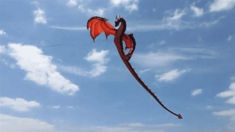 Гигантский воздушный дракон-змей Воздушный змей, Гиганты, Дракон, Гифка