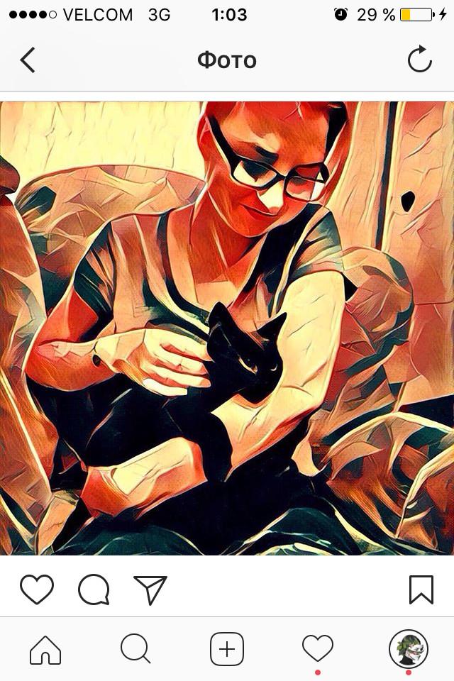 Про кота. Для подписчиков. Умер кот, Кот