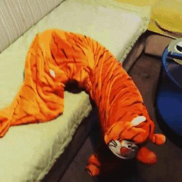 Тигра, ты пьян...