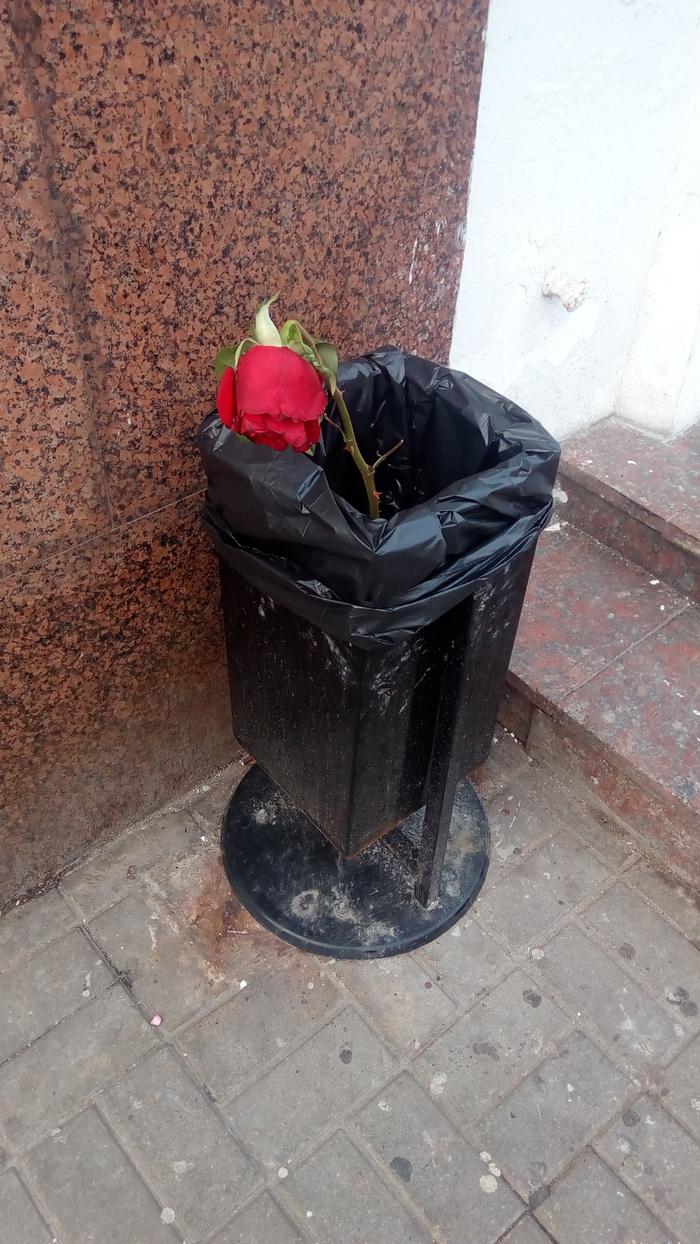 У этого цветка наверняка есть своя история о любви