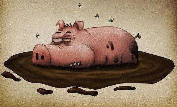 Свинья идешь и хуйню всякую думаешь про меня