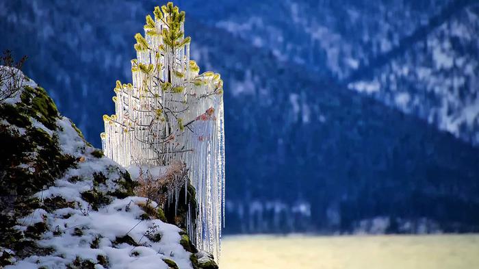 Горный Алтай, на Телецком Озере Алтай, Телецкое озеро, Зима, Природа