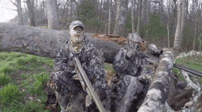 Охотник имитировал звуки индейки, чтобы привлечь других индееек. Гифка, Охотник, Индейка