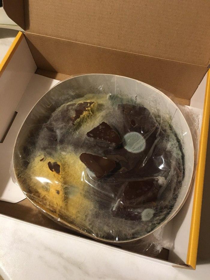 Гнилой торт или Spore в реальности Торт, Плесень, Пятерочка, Производители, Бизнес, Моё, Справедливость, Магазин, Длиннопост