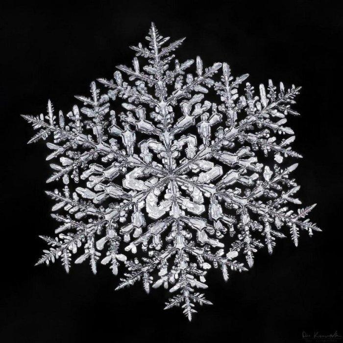 Снежинки под микроскопом Макро, Снежинка, Фотография, Микроскоп, Длиннопост