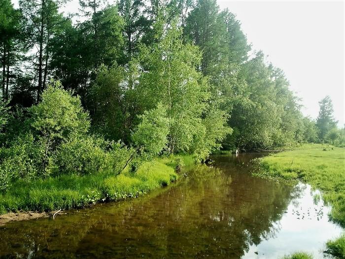 Инцест лето деревня речка