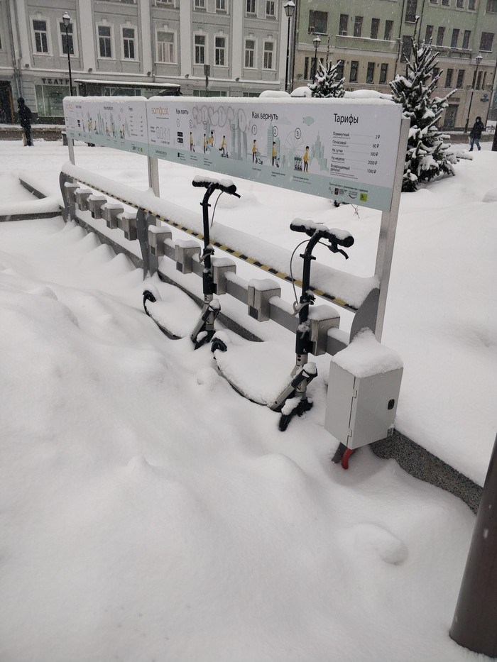 Прокат самокатов Зима, Бизнес