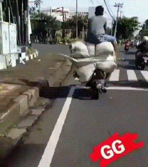 Пусть мешок-самолет за собой унесет Индонезия, Мопед, Грузоперевозки, Гифка