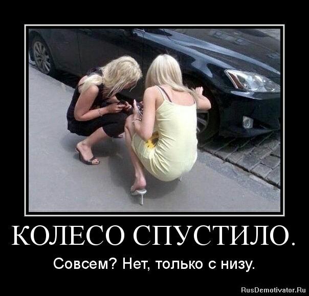 Если блондинка включила левый поворот, это не значит, что она повернет направо