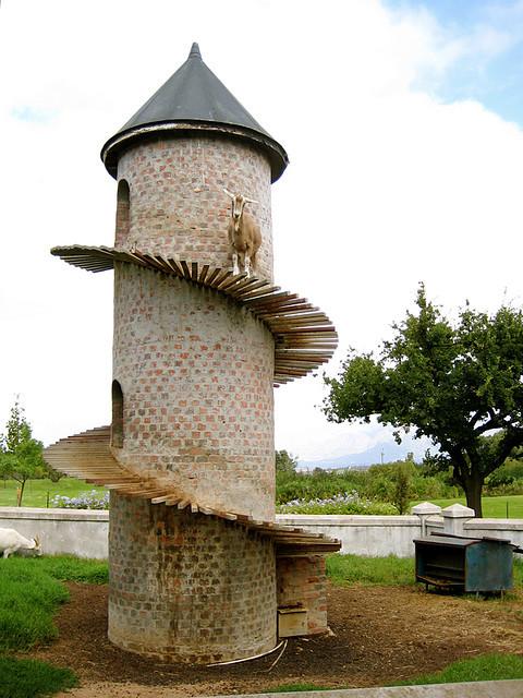 The Goat Tower Смекалка, Башня, Горные козлы, Южная Африка, Видео, Длиннопост