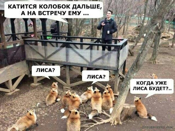 Лисьи сказки. Лиса, Фыр, ВКонтакте