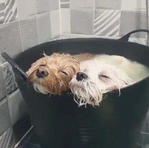 Время для тёплой ванны