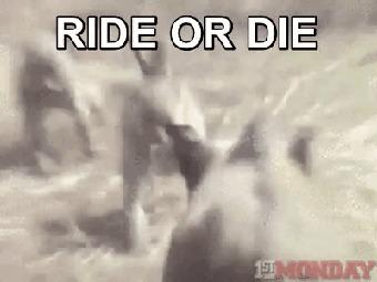 Беги или умри