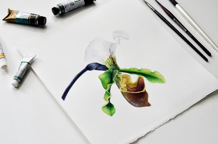 Орхидея, акварель Акварель, Художник, Арт, Акварелный рисунок, Ботаническая иллюстрация, Рисунок