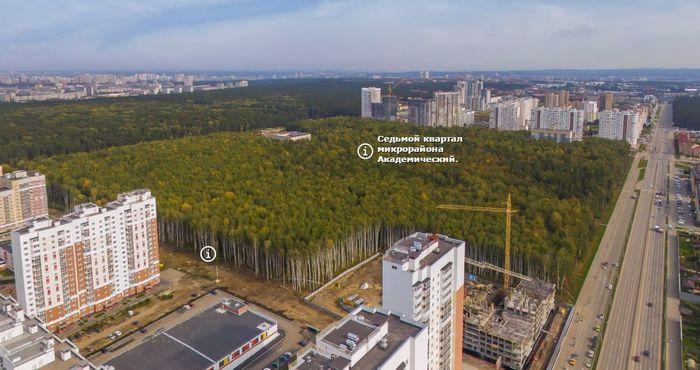 Спасаем лес в Академическом, Екатеринбург