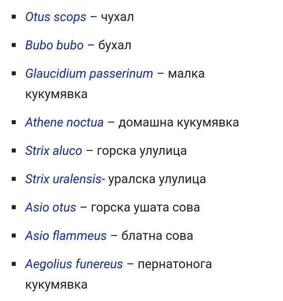 Просто совы на болгарском языке Сова, Перевод, Латынь, Болгарский язык, Википедия