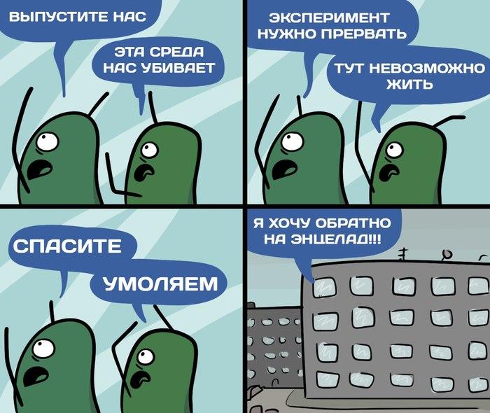 Новость №514: Жизнеспособность микробов архей проверили условиями Энцелада Образовач, Наука, Микробы