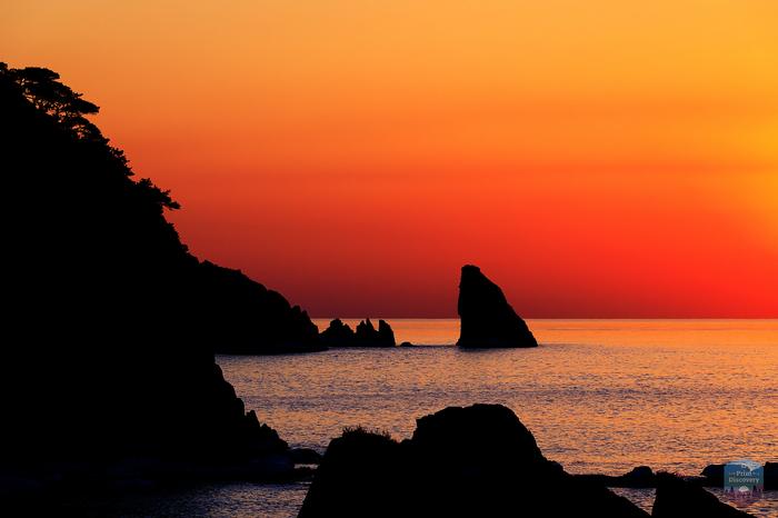 Могильные сосны и неприступные скалы Дальневосточного морского заповедника