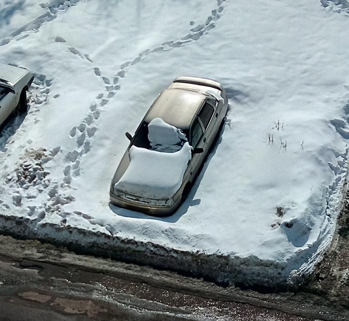 Обман зрения Авто, Снег, Стекло, Подснежники