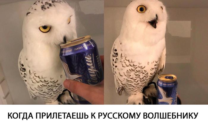"""Это тебе не """"сливочное пиво""""."""