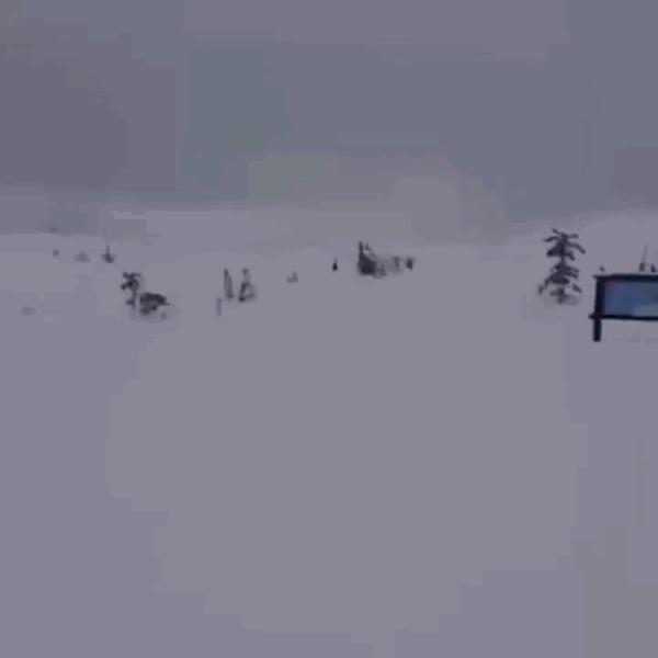 Кувырок на лыжах