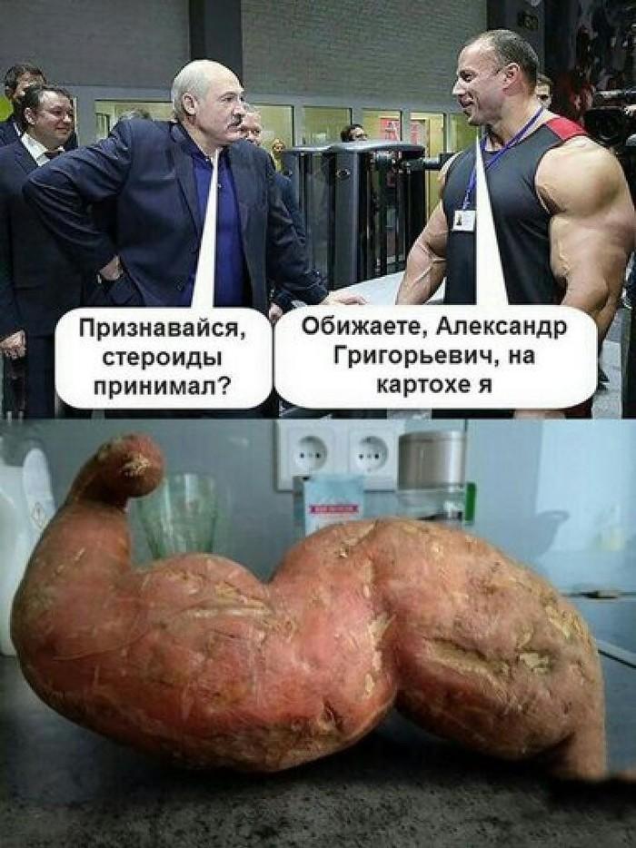 Только картоху!