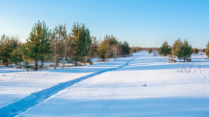 Зимняя солнечная подборка Фотография, Зима, Снег, Солнце, Пейзаж, Nikon d5200, 18-55 kit, Длиннопост