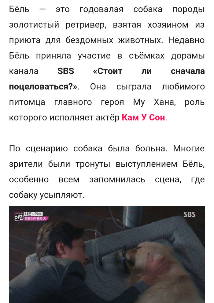 Хороший песик Собака, Актерская игра, Южная корея, Длиннопост