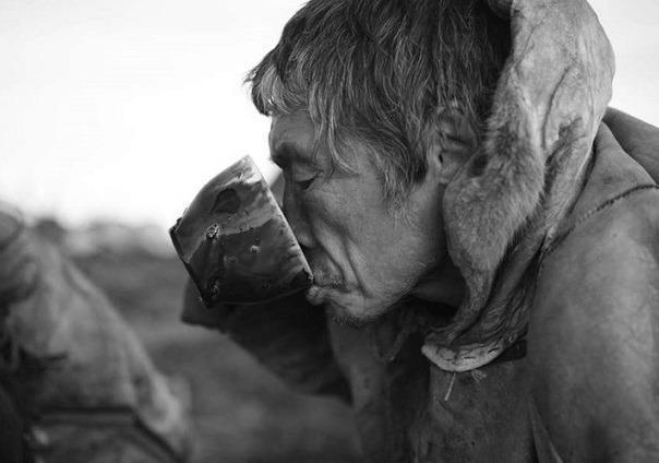 Зачем северные народы пьют оленью кровь кровь, олень, Север, Народ севера, длиннопост