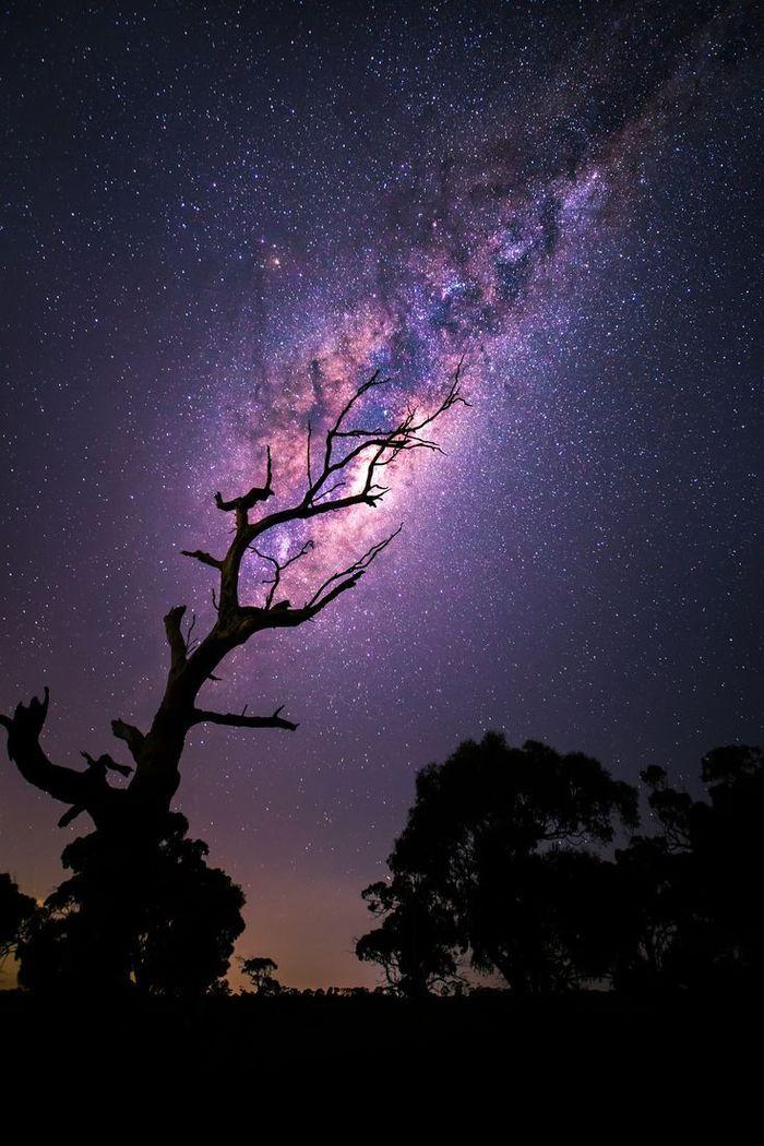 Звёздное небо и космос в картинках - Страница 40 1523087727194632691