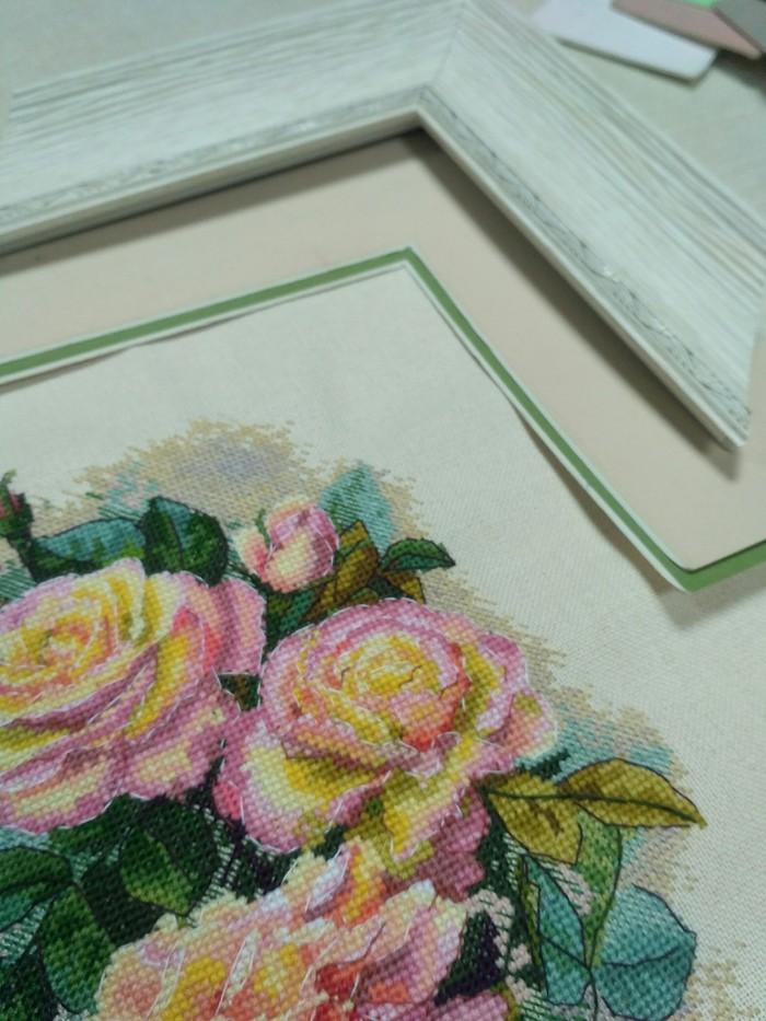 Винтажные розы Мережка, Вышивка, Вышивка крестом, Рукоделие с процессом, Длиннопост